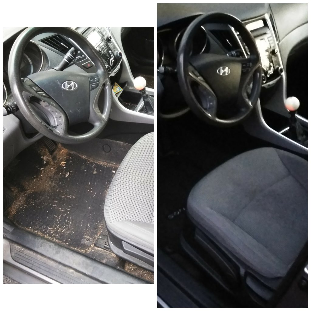 drivers side by side image