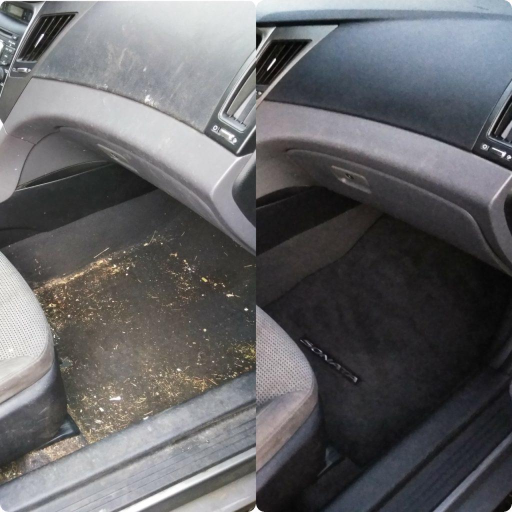 passenger side by side image